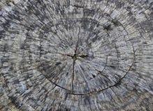 Stary drzewnego fiszorka tekstury tło Zdjęcie Royalty Free