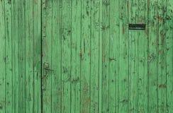 Stary drzwi przebierający jako zielony ogrodzenie Zdjęcia Stock