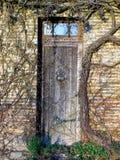 Stary drzwi przerastający z roślinnością zdjęcia stock