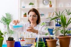 Stary ?e?ski biotechnologia chemik pracuje w lab fotografia royalty free