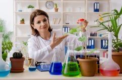 Stary ?e?ski biotechnologia chemik pracuje w lab zdjęcie stock