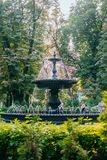 Stary fontain w parku obraz royalty free