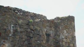 Stary forteca od wieków średnich, Broniąca ściana zdjęcie wideo
