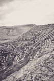 Stary Grecki amfiteatr Gubjący po środku Nigdzie Obrazy Royalty Free