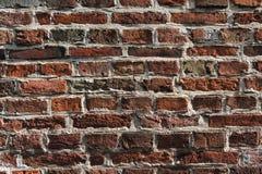 Stary grunge ściana z cegieł tło Obraz Stock