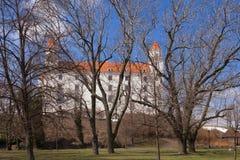 Stary Hrad - oud kasteel Royalty-vrije Stock Foto