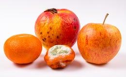 Stary i świeży jabłko odizolowywający na białym tle pleśniowa i świeża mandarynka zdjęcia stock
