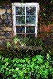 Stary irlandczyka dom, okno z zieloną koniczyną i Obrazy Stock