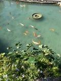 stary jeziora łodzi rybackich obraz royalty free