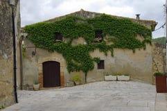 Stary kamienia dom przerastający z zielonymi winogradami zdjęcia royalty free