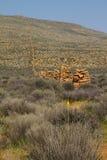 Stary kamienia gospodarstwa rolnego ogrodzenie w Karoo Fotografia Royalty Free