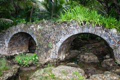 Stary kamienia most w dżungli Zdjęcia Royalty Free