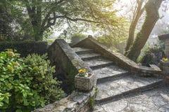 Stary kamienia most w lesie zdjęcie stock