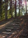 Stary kamienny schody Zdjęcie Royalty Free