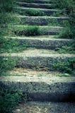 Stary kamienny schody, przerastający z trawą obraz stock