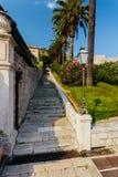Stary kamienny schody z drzewkiem palmowym w Dubrovnik, Croatia Fotografia Royalty Free