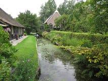 Stary kanał przerastający z szlamowym i duckweed Fotografia Stock