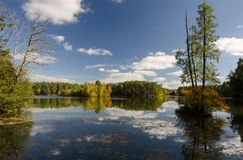 Stary Kanclir pond with small islands, Czech Republic. Lovely picture of Stary Kanclir pond situated in South Bohemia in Czech Republicwith small islands Royalty Free Stock Photo