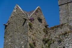 Stary kasztelu wierza Dunguaire kasztel w Irlandia Obrazy Stock