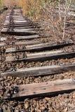 Stary kolei, linii kolejowej, linii kolejowej, porzucającego, niszczącego i przerastającego drewno, Obraz Stock