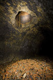 Stary kolejowy tunel Fotografia Royalty Free