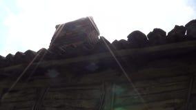 Stary komin na starym domu Słońce promienie popierają zbiory