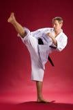 stary kopania karate. Zdjęcie Stock