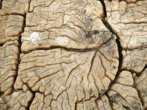 Stary krakingowy drewno Obrazy Stock