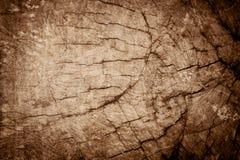 Stary krakingowy drewno Obraz Stock