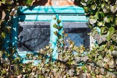 Stary mały drewniany okno otaczający bluszczem obrazy royalty free