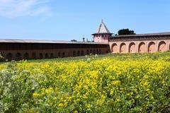 Stary monaster w Rosja Obraz Royalty Free