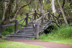 Stary most w Australia Obraz Stock