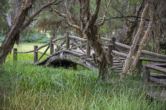 Stary most w Australia Fotografia Stock