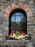 Stary nieociosany okno z kwiatami Obrazy Royalty Free