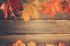 Stary nieociosany retro jesieni pojęcie z mokrymi liśćmi klonowymi na drewnianym Obraz Stock