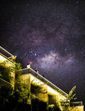 Stary night sky over rainforest Royalty Free Stock Photo
