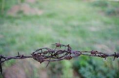 Stary ośniedziały drut kolczasty Zdjęcia Royalty Free