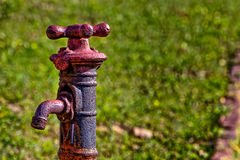Stary ośniedziały przyglądający faucet z trawiastym tłem zdjęcia royalty free