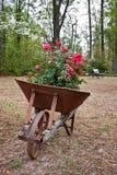 stary ośniedziały wheelbarrow fotografia stock