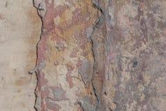 Stary odłupany tynk na betonowej ścianie, szczerbiąca się farba, tekstury tło obraz stock