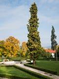 Stary ogród i fontanna obraz stock