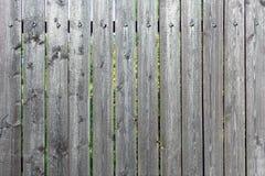 Stary ogrodzenie deski z zatartą farbą Pusty szary tło deski texture drewnianego zdjęcia royalty free