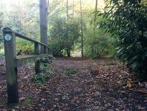 Stary ogrodzenie w Forrest Zdjęcie Royalty Free