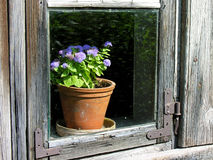 stary okno drewna zdjęcia stock