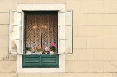 Stary okno z flowerpots Fotografia Stock