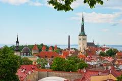 stary Olaf widok Tallinn Fotografia Royalty Free