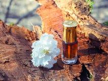 Stary olej od sandałowych drzew i agarwood Indianin koncentrujący pachnidło Zdjęcie Stock