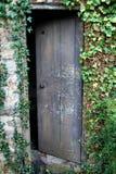 Stary otwarty drewniany drzwi przerastający z bluszczem Fotografia Royalty Free