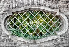Stary owalny okno z stalowymi pręt Zdjęcia Stock