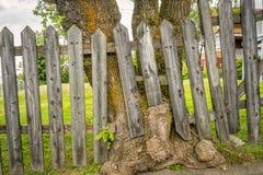 stary płotu drewna Zdjęcia Stock